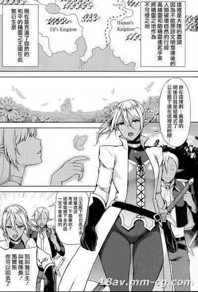 [Pつssy汉化组-074] (C87) [H.B.A (うさぎなごむ)] エルフの姫は快楽に哭く V2