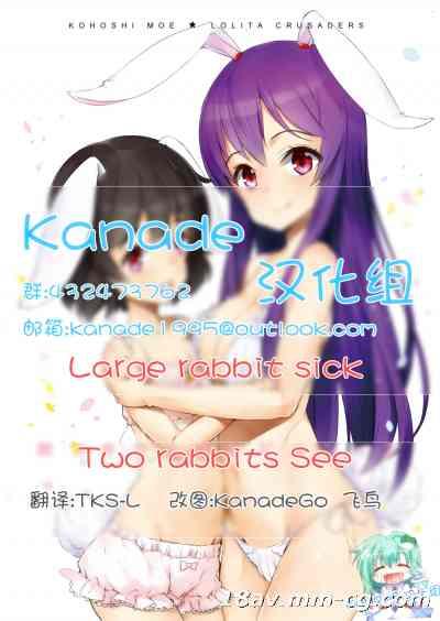【Kanade汉化组】[ロリータクルセイダーズ (小星萌)] 餅つきうさぎがピョン×3 (東方Project) [DL版]