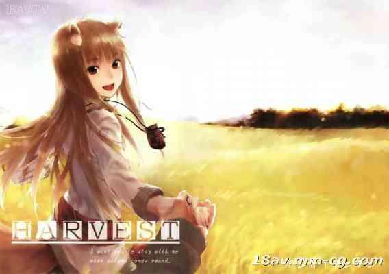 [空気系★汉化] (SC52) [アジサイデンデン (川上六角、小鳥遊レイ)] Harvest (狼