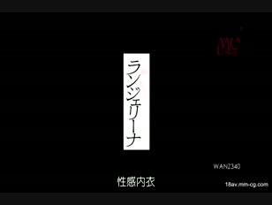 WANZ-340-[中文]情趣內衣 ERIKA