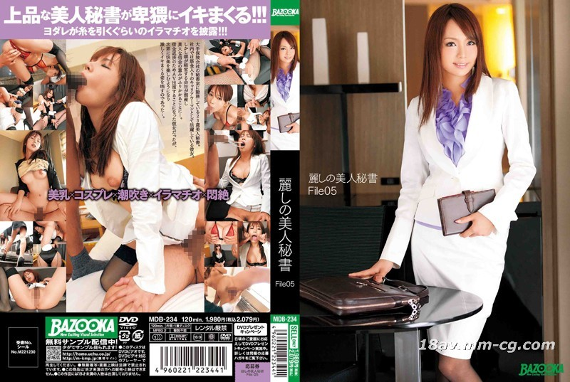 (BAZOOKA) Pretty Beauty Secretary File05