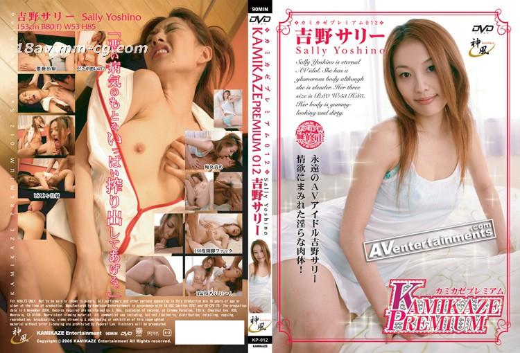 [无码]Kamikaze Premium Vol.12