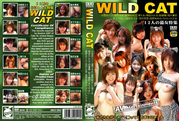 [No code] WILD CAT-12 cat and girl collection -1