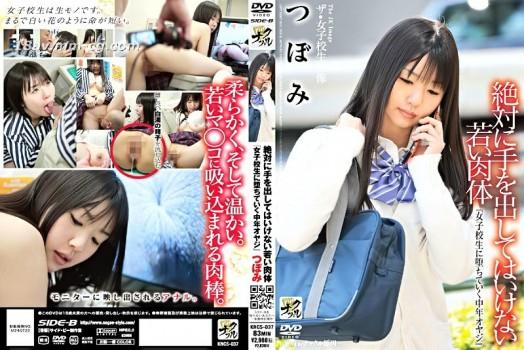 (SIDE-B)女高中生影像 絕對不能動手的年輕肉體『墮落於與女高中生相幹的中年大叔』 蕾