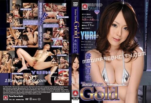 Tora Tora Gold Vol.95